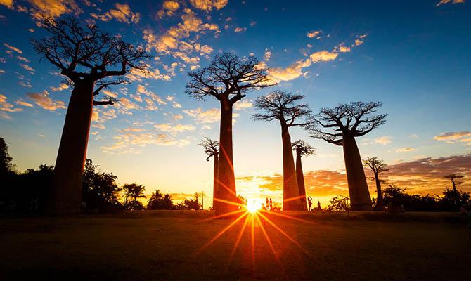 Ученые предрекают распад Мадагаскара на несколько островов